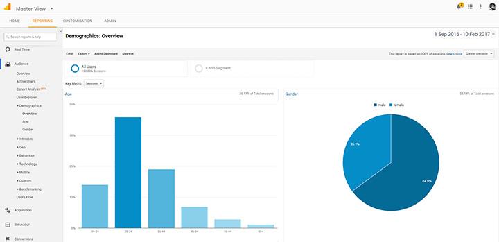 Google Analytics demographic overview